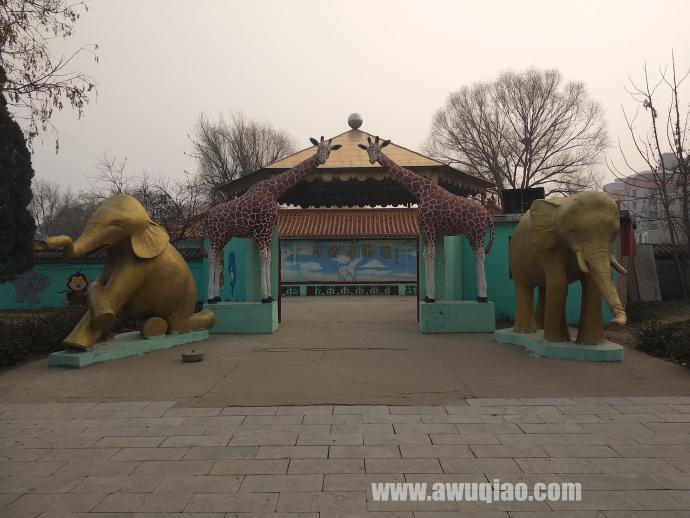 滑稽动物园