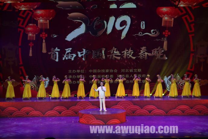 2019中国首届杂技春晚精彩瞬间