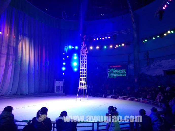 红牡丹杂技剧场:高空杂技