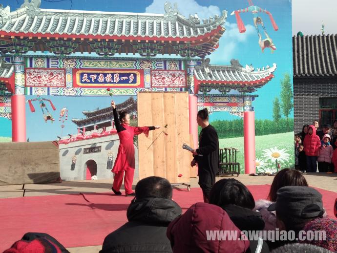 中华园大马戏团-飞刀表演
